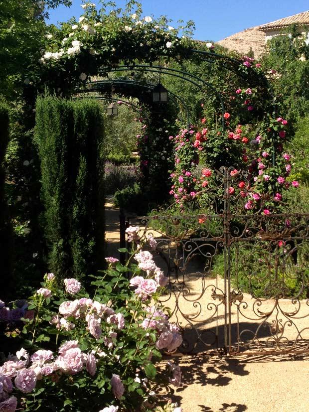Garden studio landscape design in las vegas nevada by for Garden design las vegas